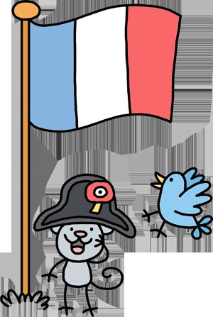 Napoleon's Flag