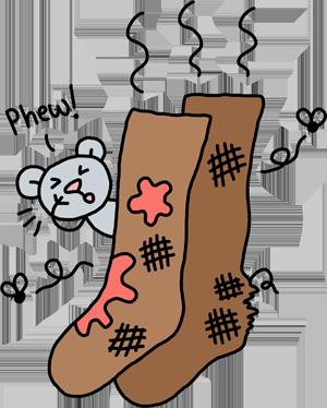 home-object-socks